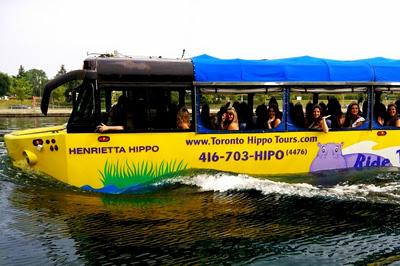 Бегемоты - автобус - гибрид