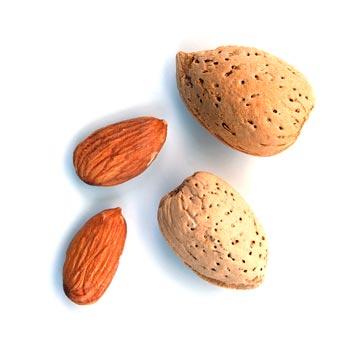 Витамин Е - один из самых важных витаминов для женщин