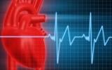 Фитотерапия при аритмиях сердца