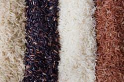 Полезные свойства черного риса