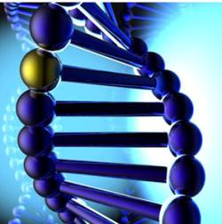 Вся правда об органических веществах - белках