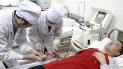Боливийские ученые установили, что введение стволовых клеток помогает организму быстрее восстановиться после инсульта.
