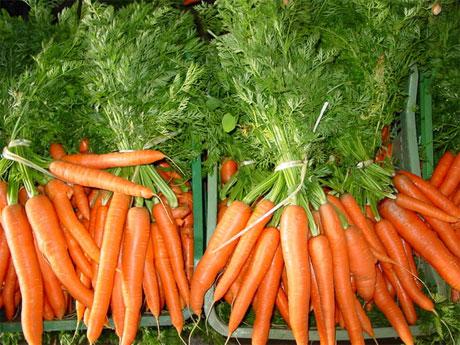 Как правильно выбрать морковь?