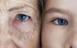 Гены улиток содержат средство, которое останавливает старение