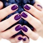 Фиолетовый лак шеллак фото