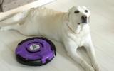 Робот-пылесос и собака фото