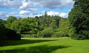 Ботанический сад Копенгагена фото