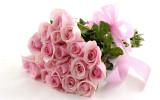 Розовые розы фото