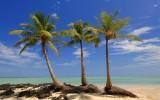 Остров лемуров - Мадагаскар