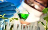 препараты с биофотонами