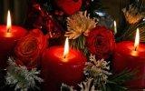 Цветы для девушки на Новый год